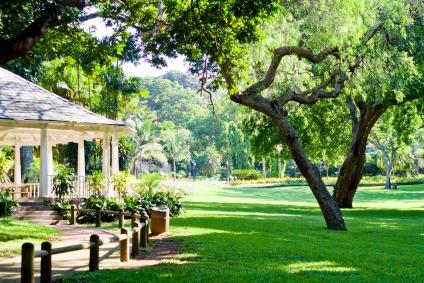 Escribano jardineros tu primer jard n for Jardines grandes